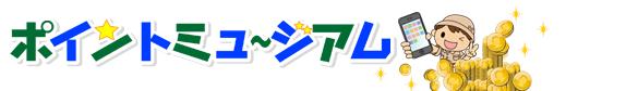 pointmuseum-logo